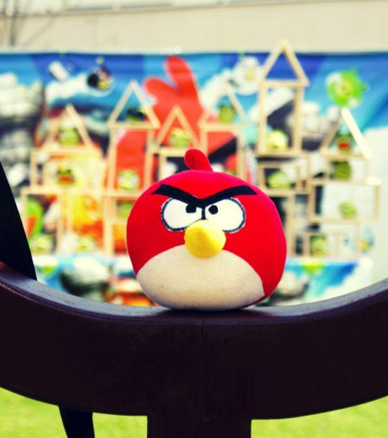 Аттракцион Angry Birds на детский праздник в Уфе